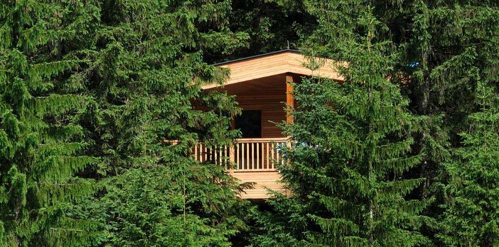 das baumhaus des hotel kranzbach tiny houses. Black Bedroom Furniture Sets. Home Design Ideas