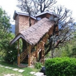 manali treehouse cottages baumhaus