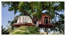 Baumhaus von Schuler