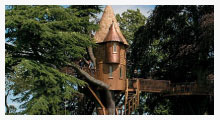 Cedar Spire Baumhaus (Photo)