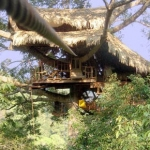 Gibbon Experience Baumhaus, Laos (Photo)