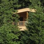 Baumhaus Schlosshotel Kranzbach