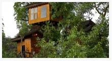 Baumhaus von Paitree