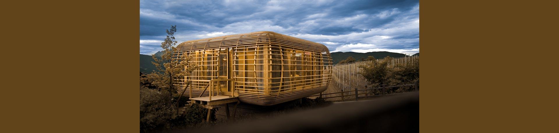 slide4-minihaus