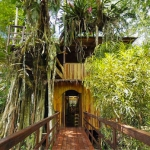 Baumhaus Topo's Tree House Costa Rica